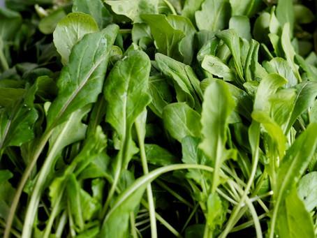Weekend Market Picks April 25 & 26, 2015: Rocket Salad