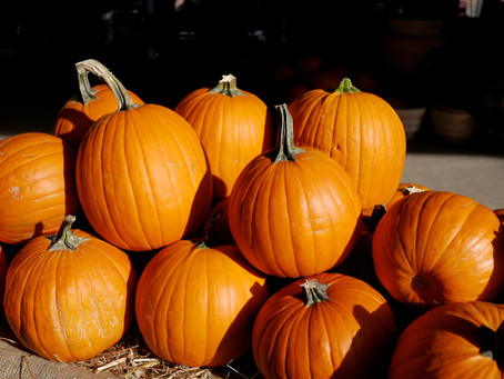 Weekend Market Picks October 5 & 6, 2013: Pumpkin Season and Other Fall Events