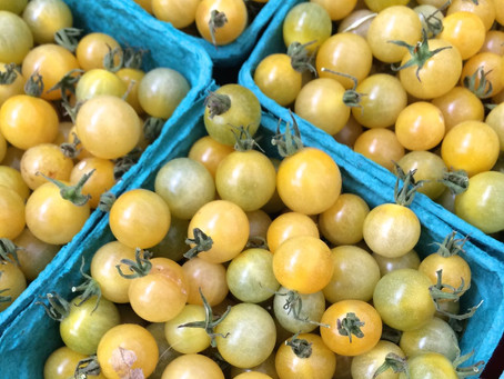 Weekend Market Picks August 22 & 23, 2015: Coyote Tomato Flavor Bombs