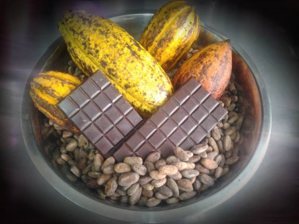 Bean-to-Bar Chocolate with Moho Chocolate in BelizeBean-to-Bar Chocolate with Moho Chocolate in Belize