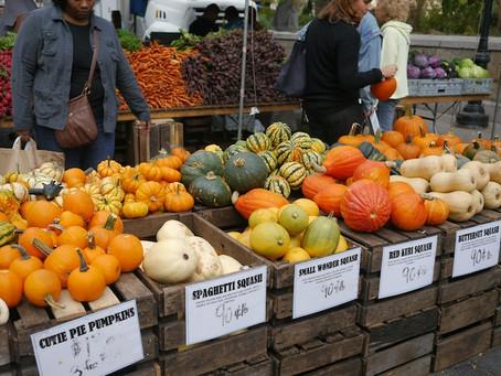 Weekend Market Picks November 16 & 17, 2013: Seasonal Squashes from S&SO Produce Farm