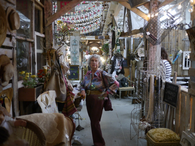 My Mom Haydee Seiger Shops Under the Twinkly Lights