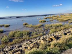 Nationalpark Wattmeer