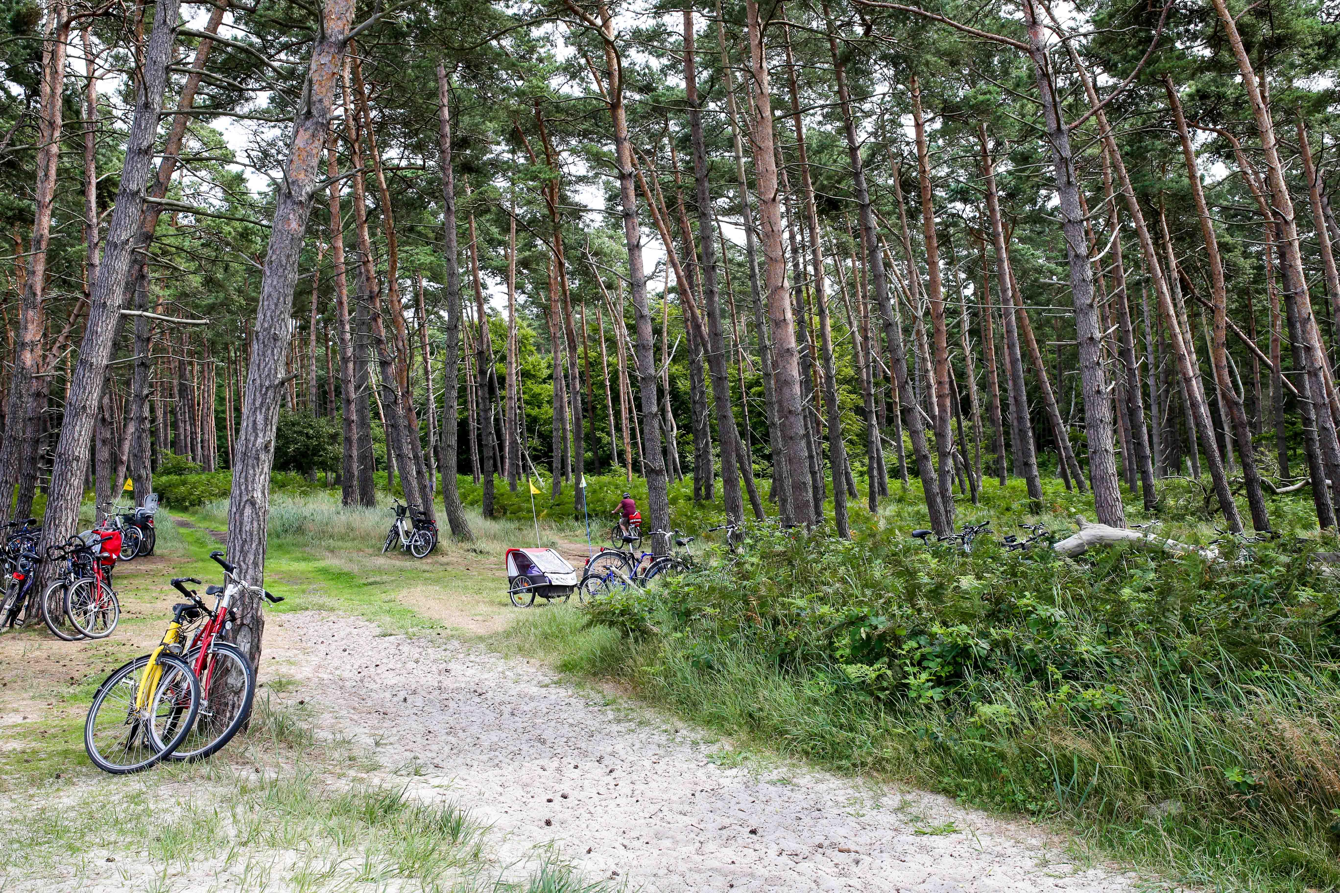"""""""Parkplatz"""" am Weststrand"""