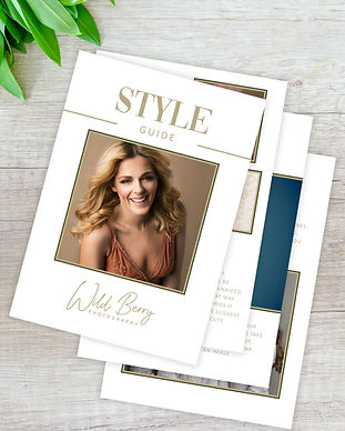 StyleGuideWebsite.jpg