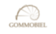 Logo Gommobiel