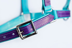 Headstall-Turquoise-Purple-2.jpg