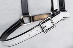Headstall-Black-White-FS-2.jpg