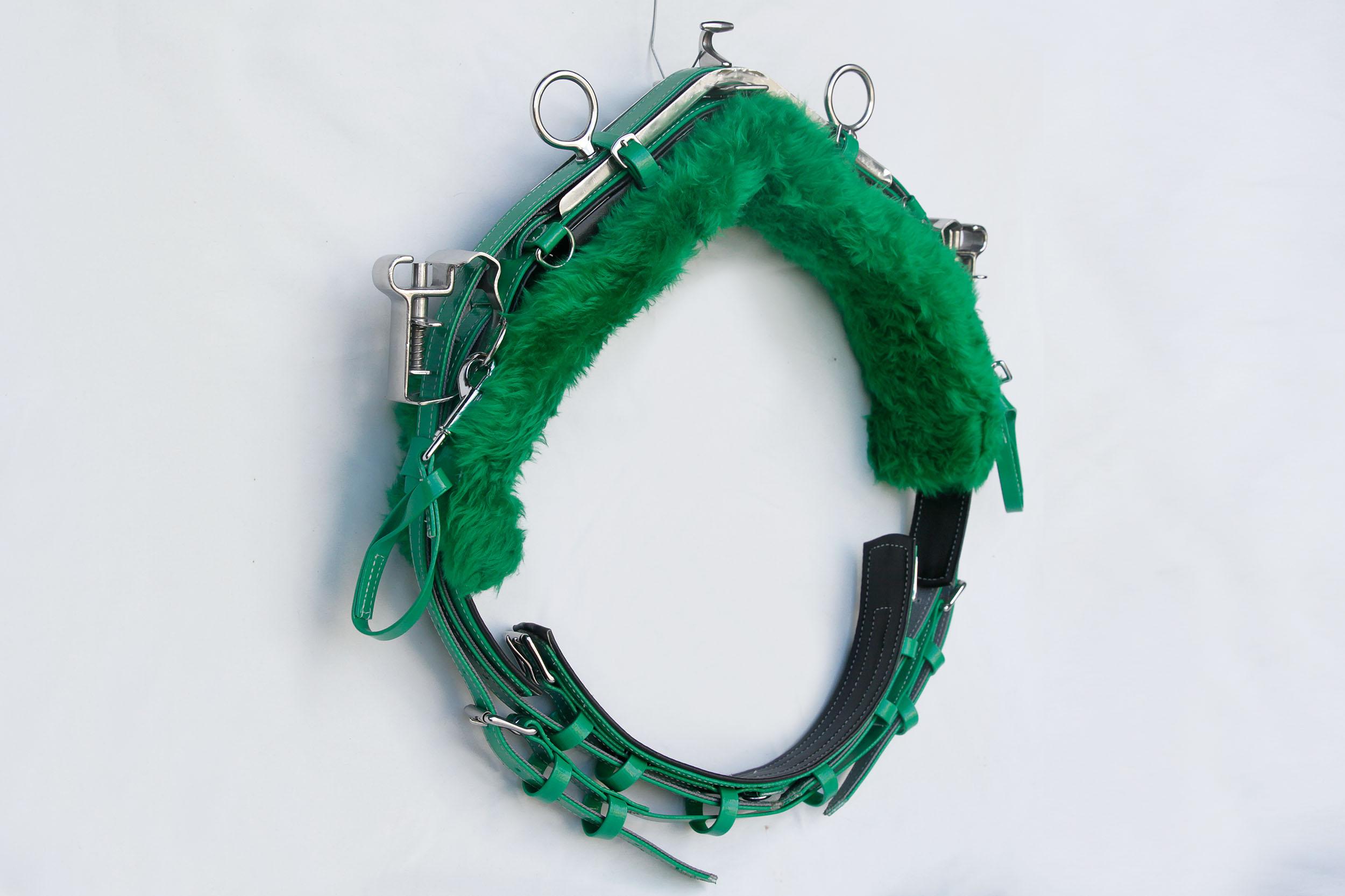 Back-Saddle-QH-Green.jpg