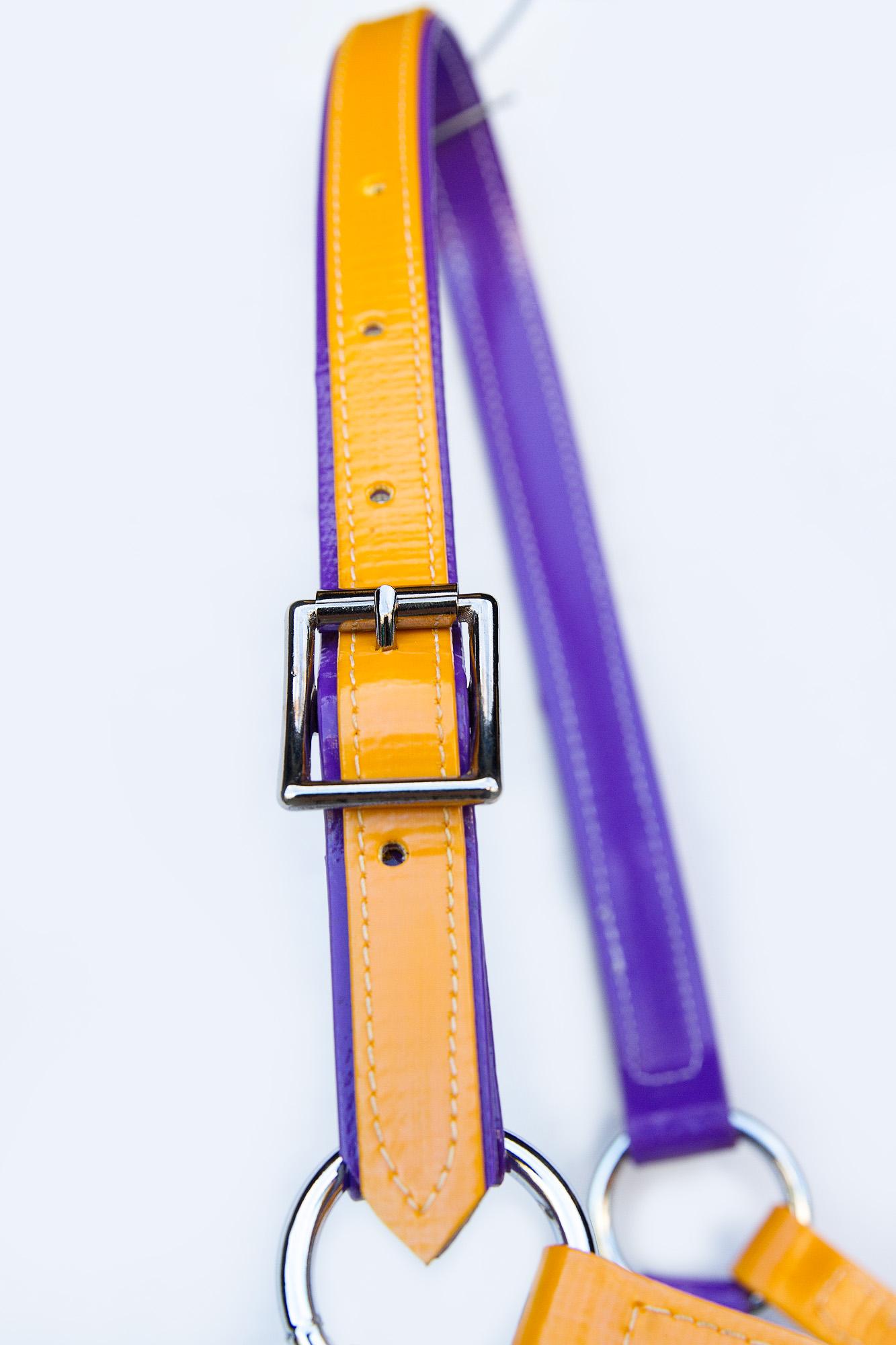 Headstall-Purple-Yellow-2.jpg