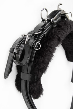 Harness-TieDown-Black-2.jpg