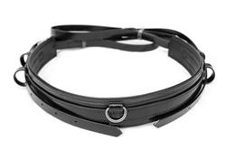 Harness-TieDown-Black-6.jpg