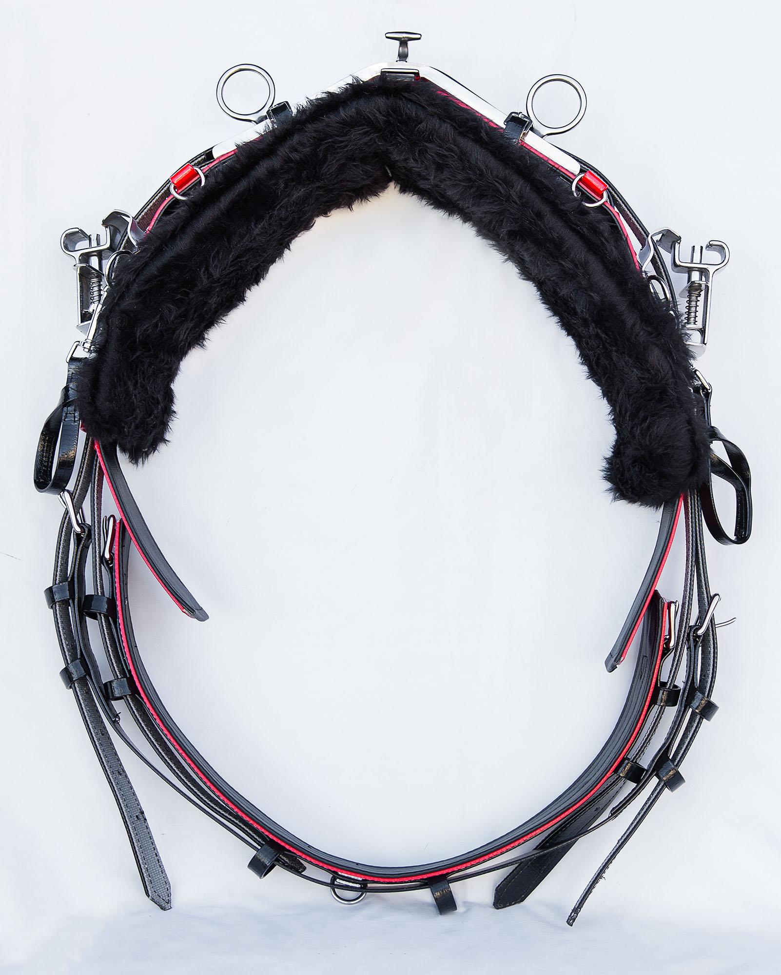 Back Saddle-QH-Black-Red 01.jpg