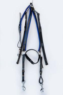Breastplate-Buxton-Black-Blue.jpg