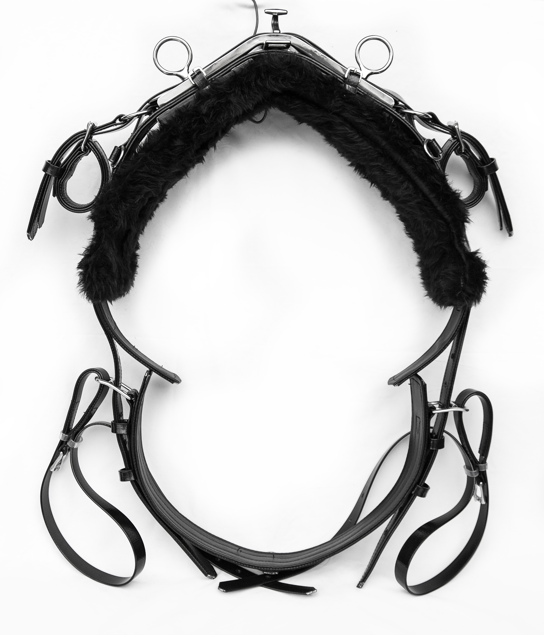 Harness-TieDown-Black-8.jpg