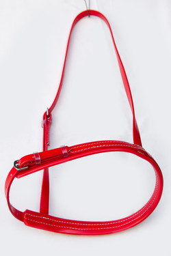 Caverson-Noseband-Red-1.jpg