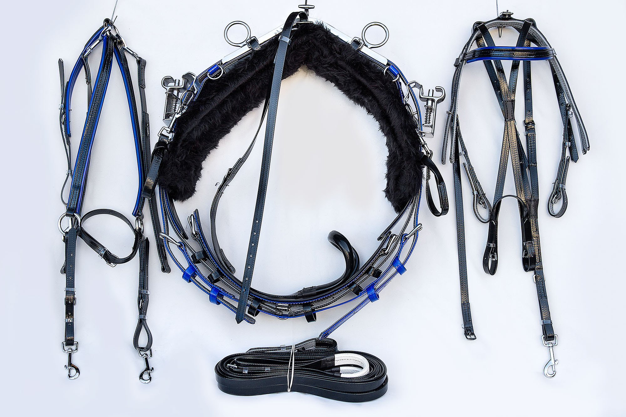Harness-QH-Black-Blue 01.jpg