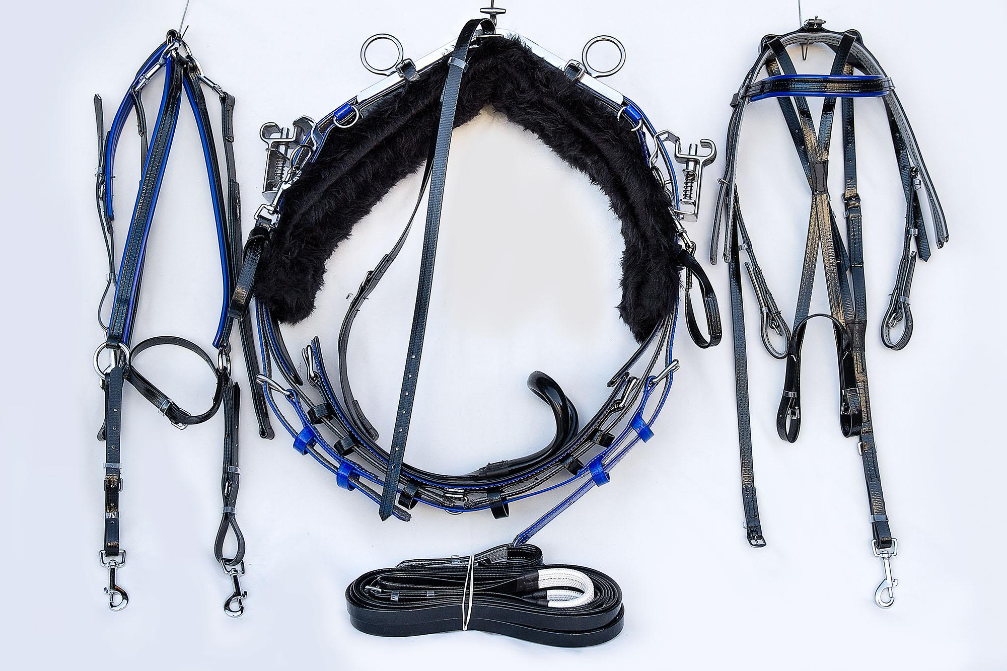 Harness-QH-Black-Blue 01.jpg