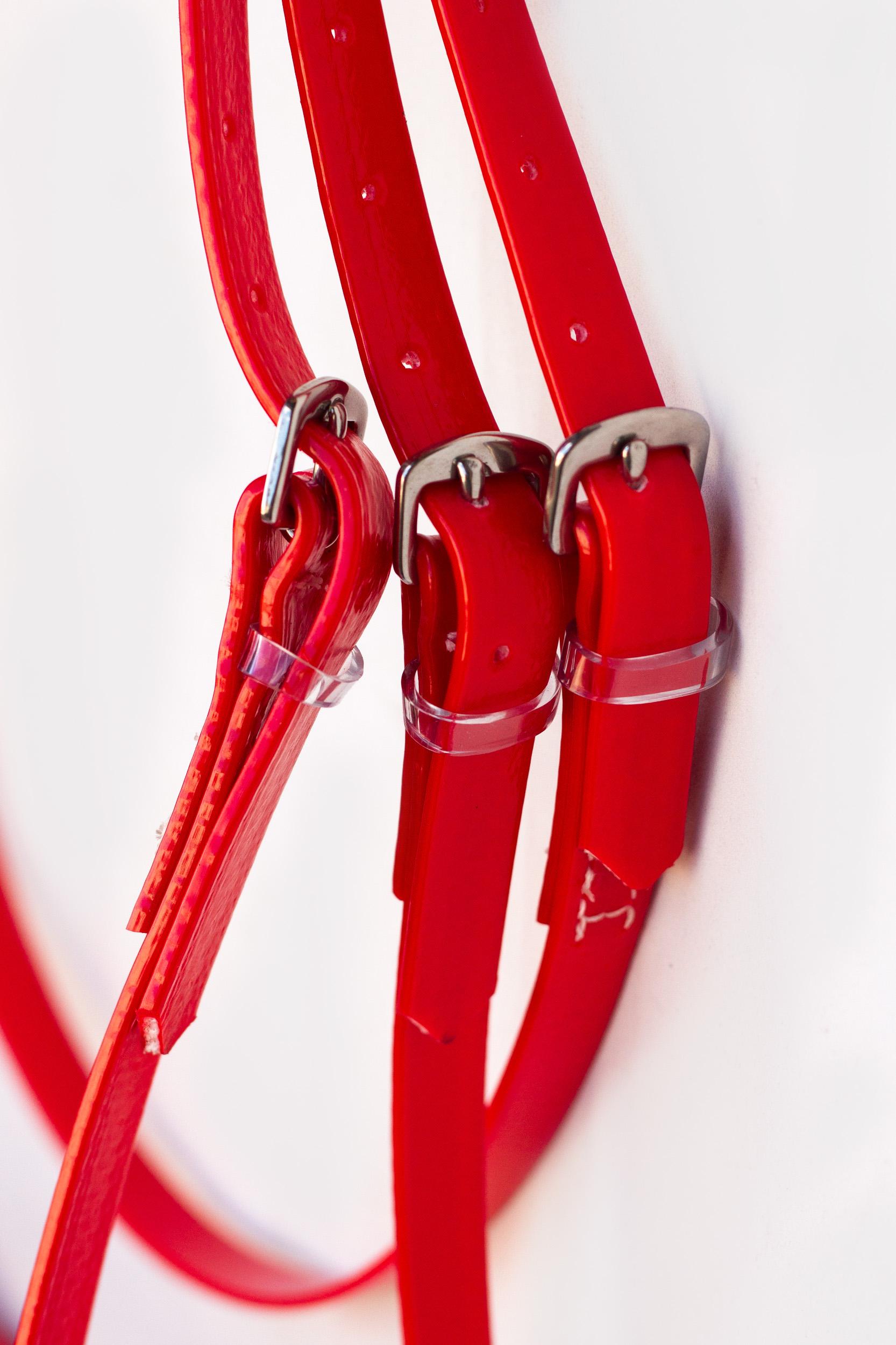 Bridle Set-Red-7.jpg
