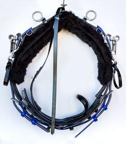 Back-Saddle-QH-Black-Blue.jpg