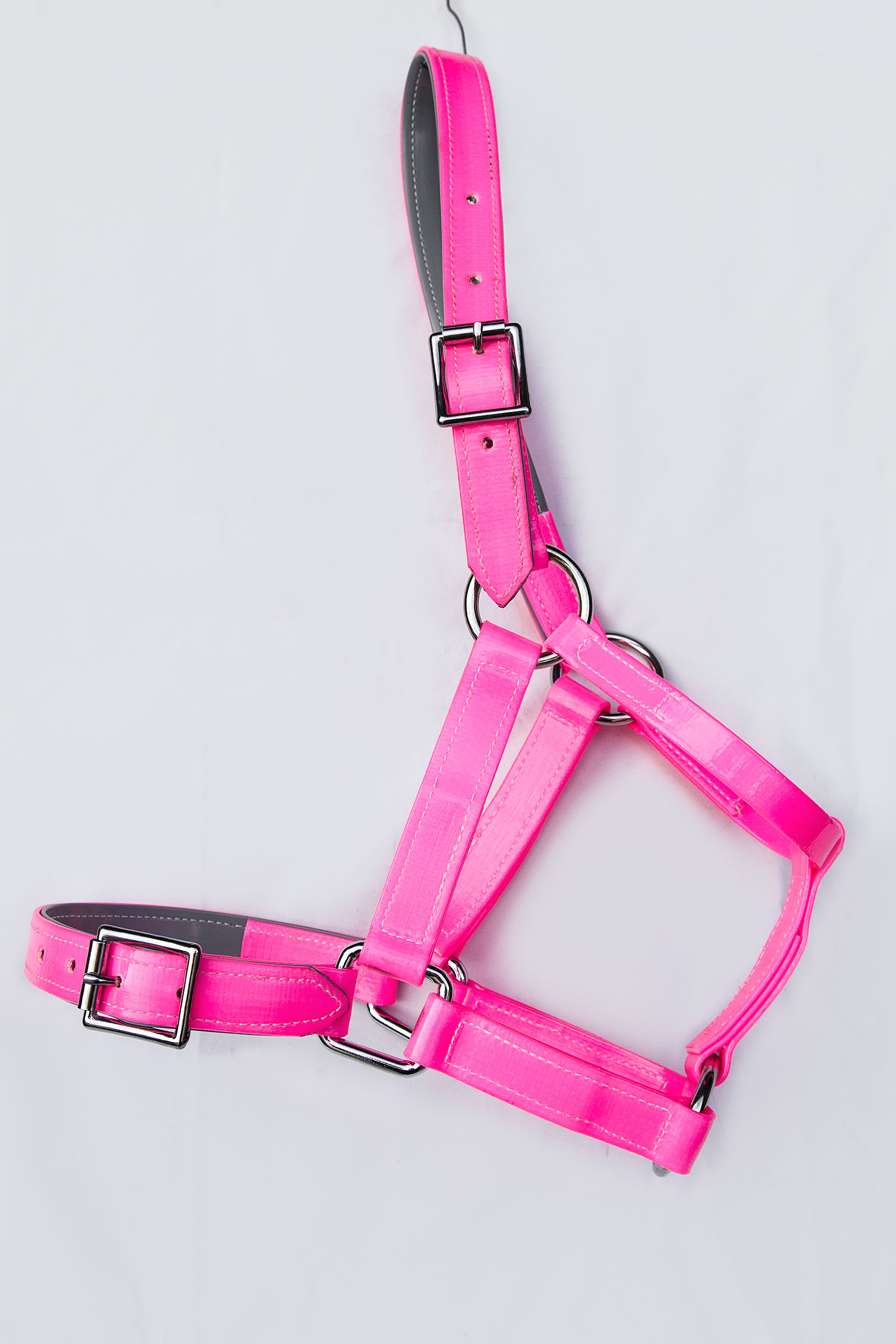Headstall-Hot-Pink-1.jpg