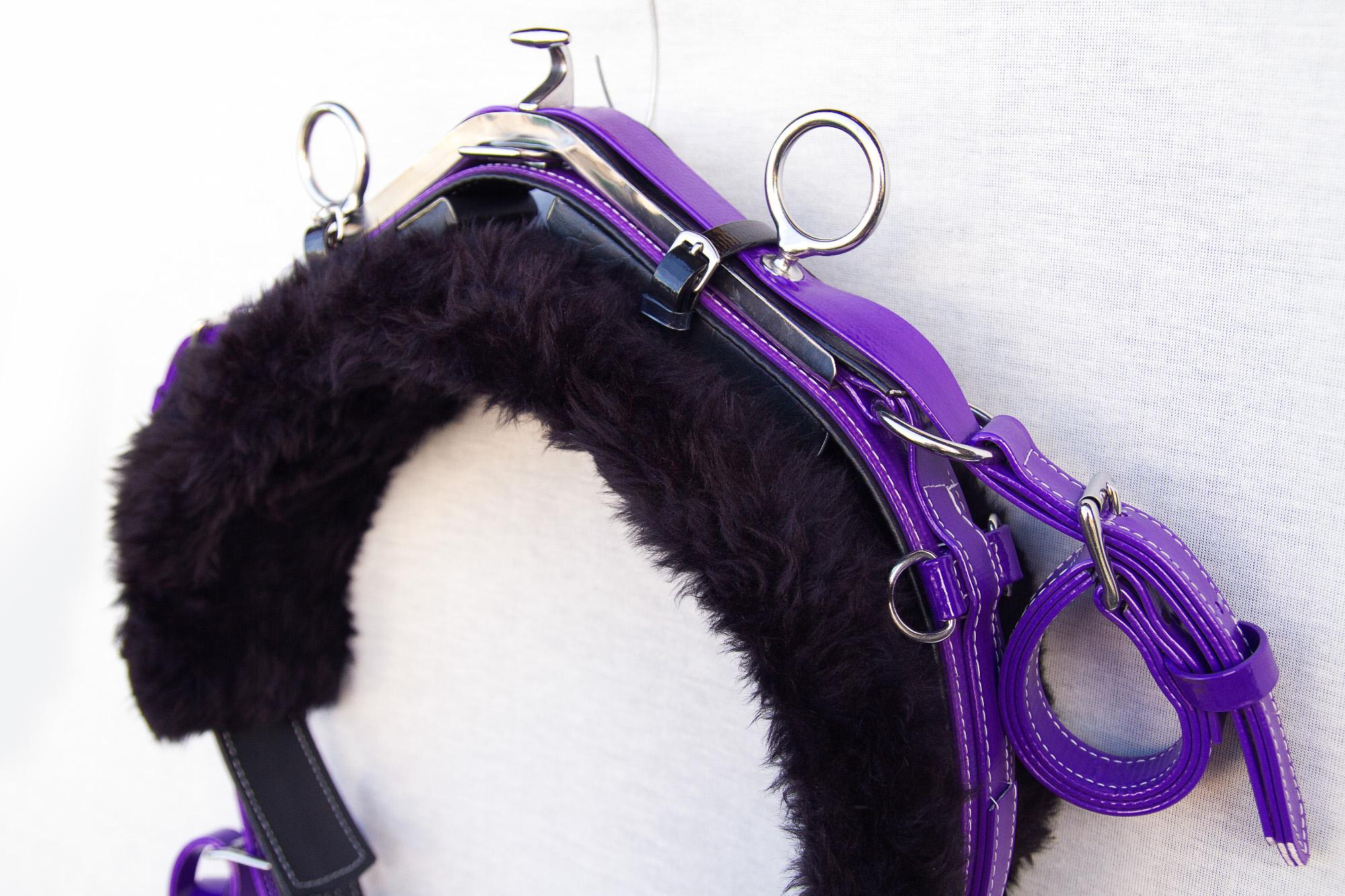 Harness-Mini-TD-Purple-7.jpg