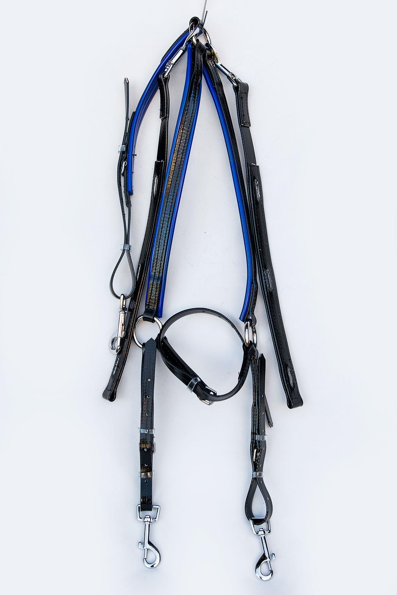 Harness-TD-Black-Blue  06.jpg