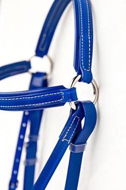 Bridle-Blue.jpg