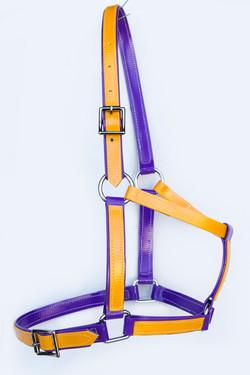 Headstall-Purple-Yellow-1.jpg