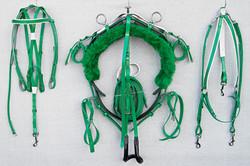 Harness-Mini-TD-Green-1.jpg