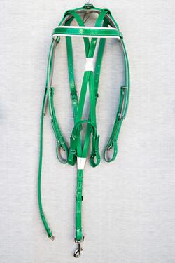 Harness-Mini-TD-Green-4.jpg