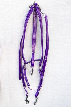 Harness-Mini-TD-Purple-4.jpg