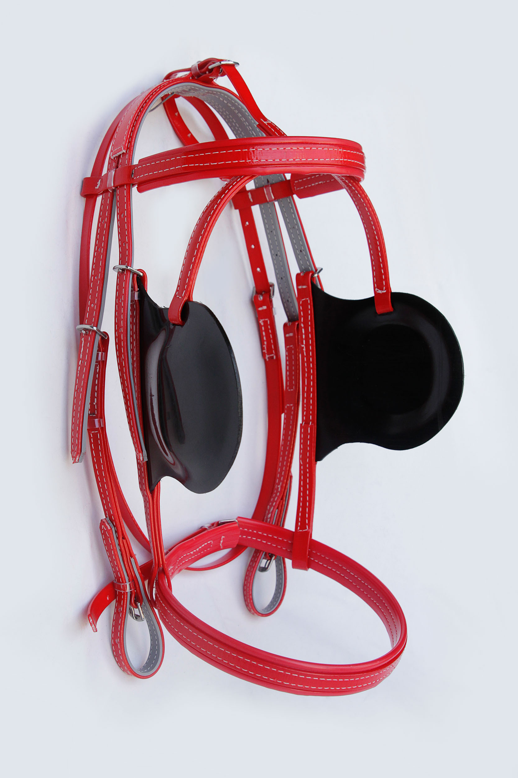 Bridle-Driving-Red.jpg