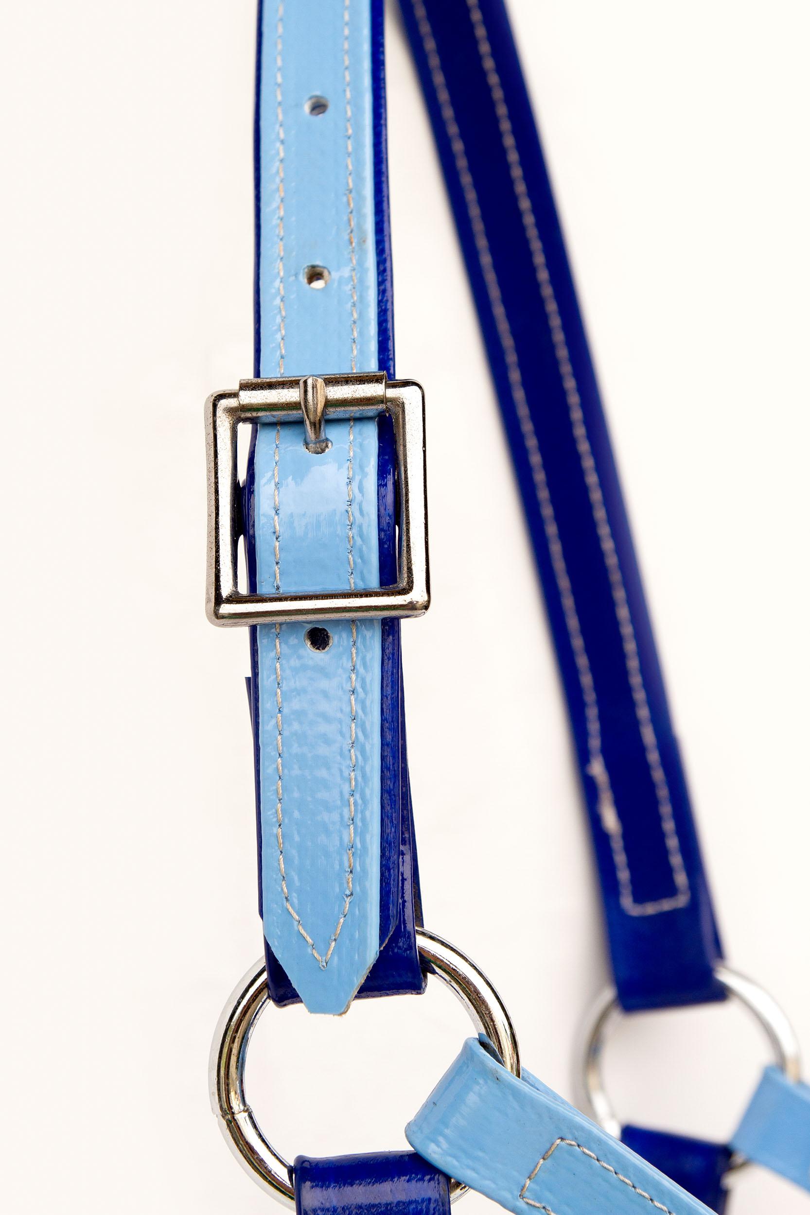 Headstall-Blue-Light Blue 2.jpg