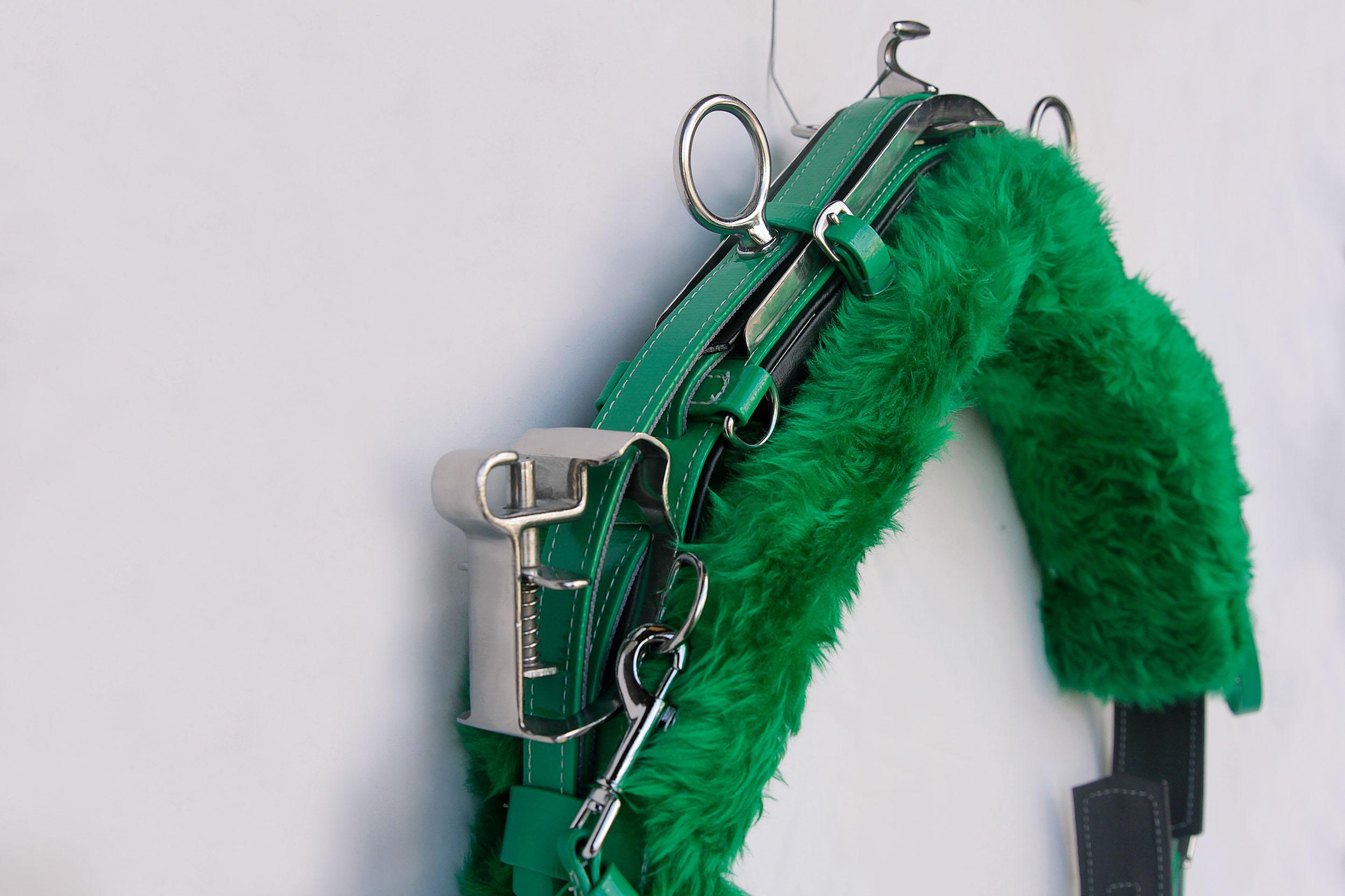 Harness-Minitrot-QH-Green.jpg