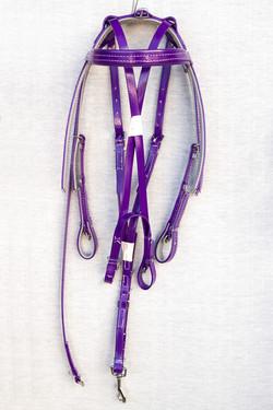 Harness-Mini-TD-Purple-2.jpg