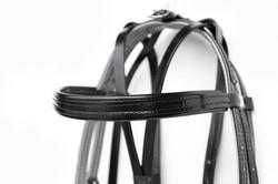 Harness-TieDown-Black-14.jpg