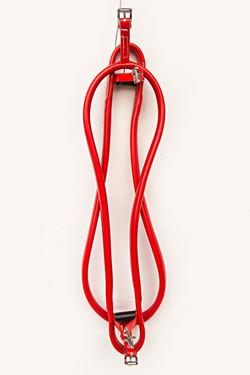 Hopples-Red 3.jpg