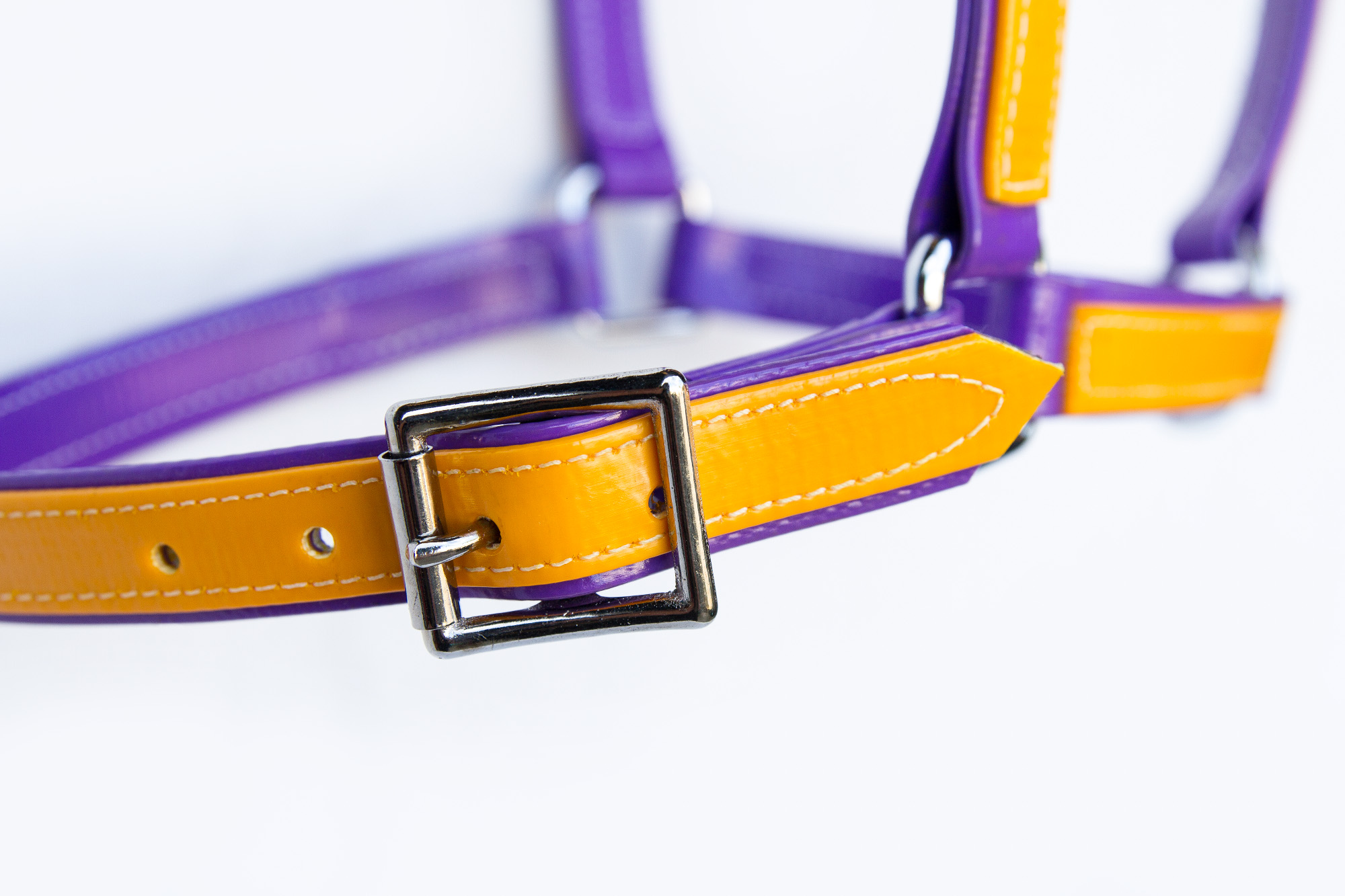 Headstall-Purple-Yellow-3.jpg