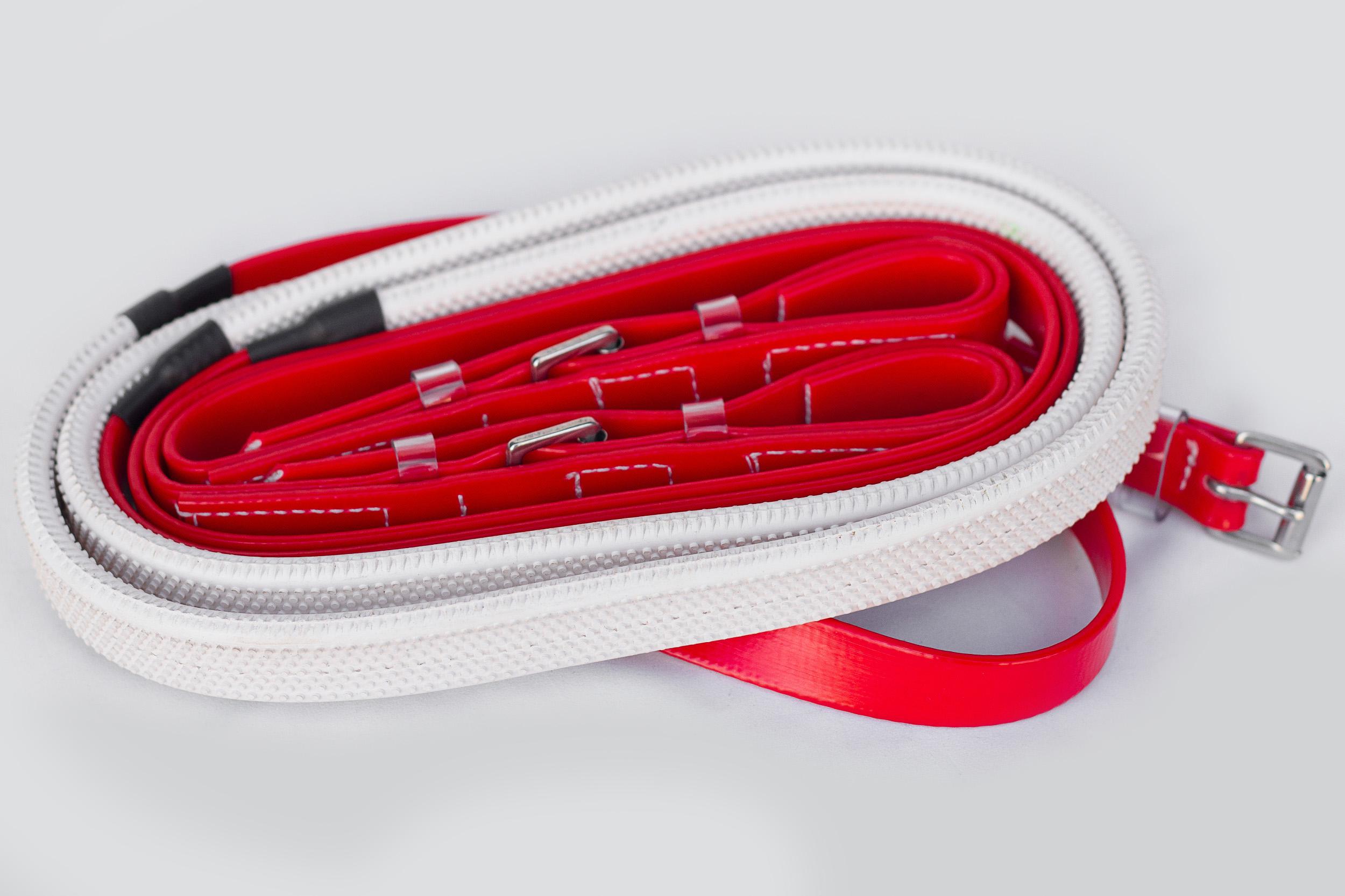 Bridle Set-Red-2.jpg