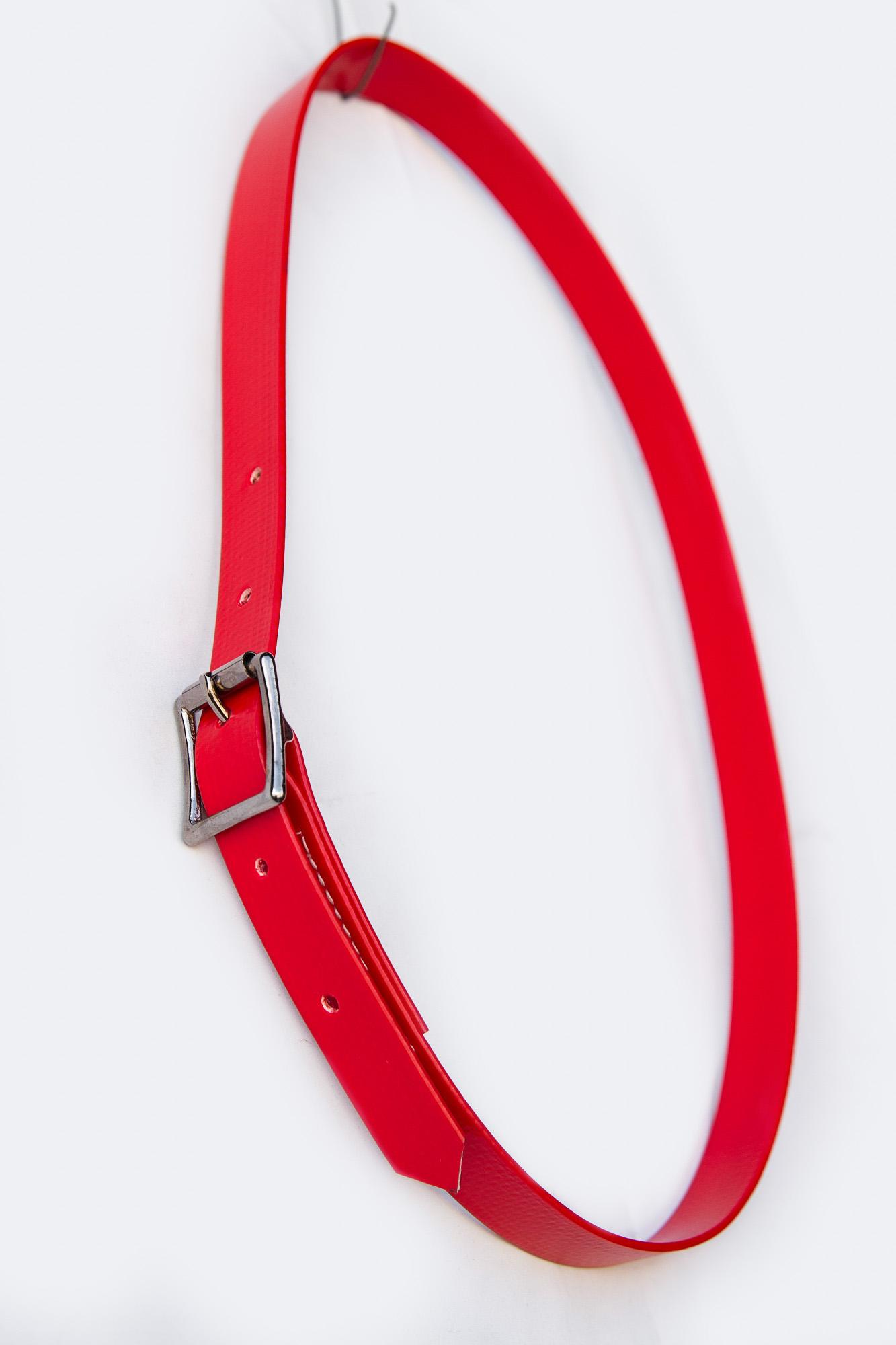 Collar-Red-2.jpg