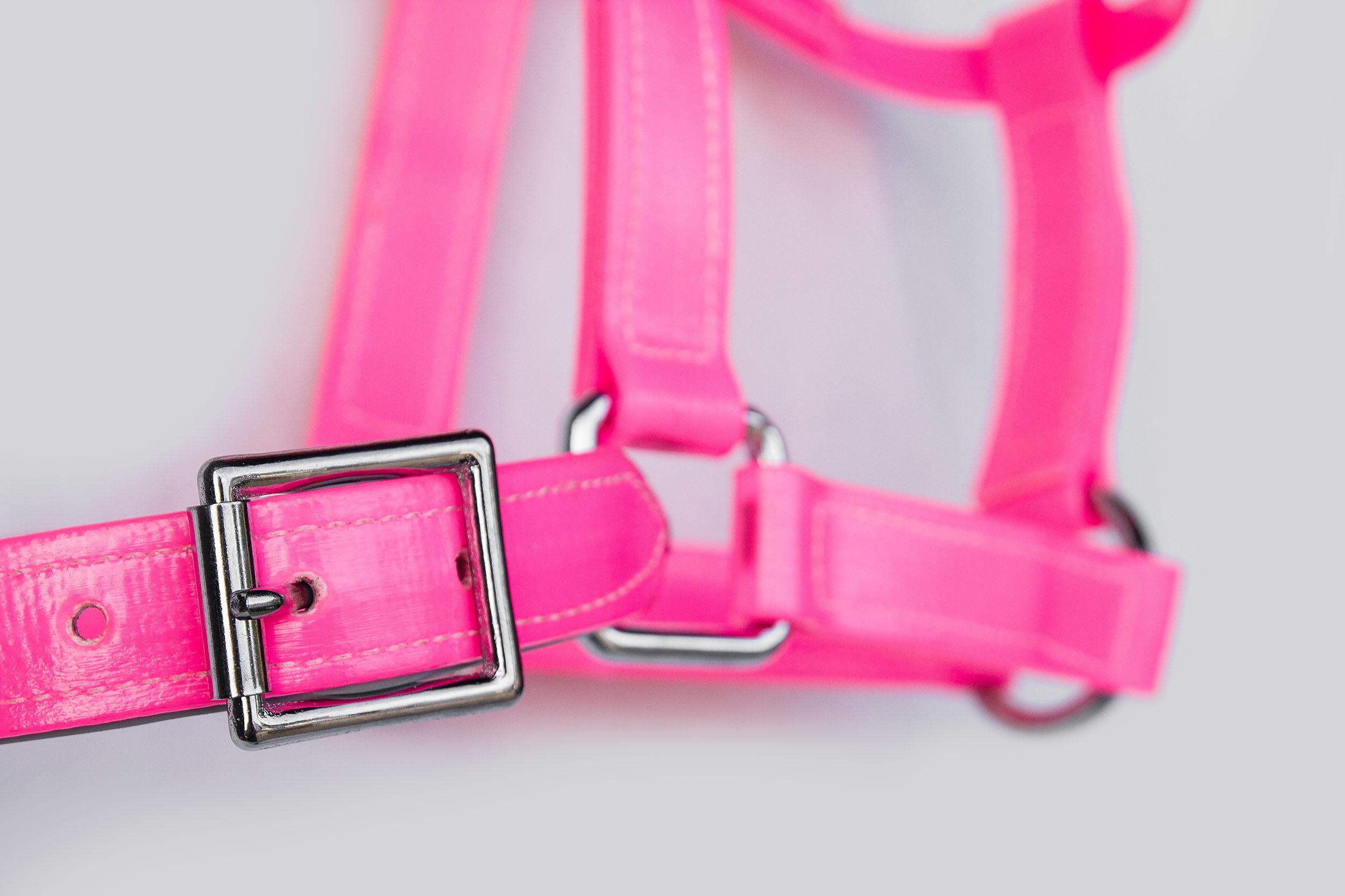 Headstall-Hot-Pink-2.jpg