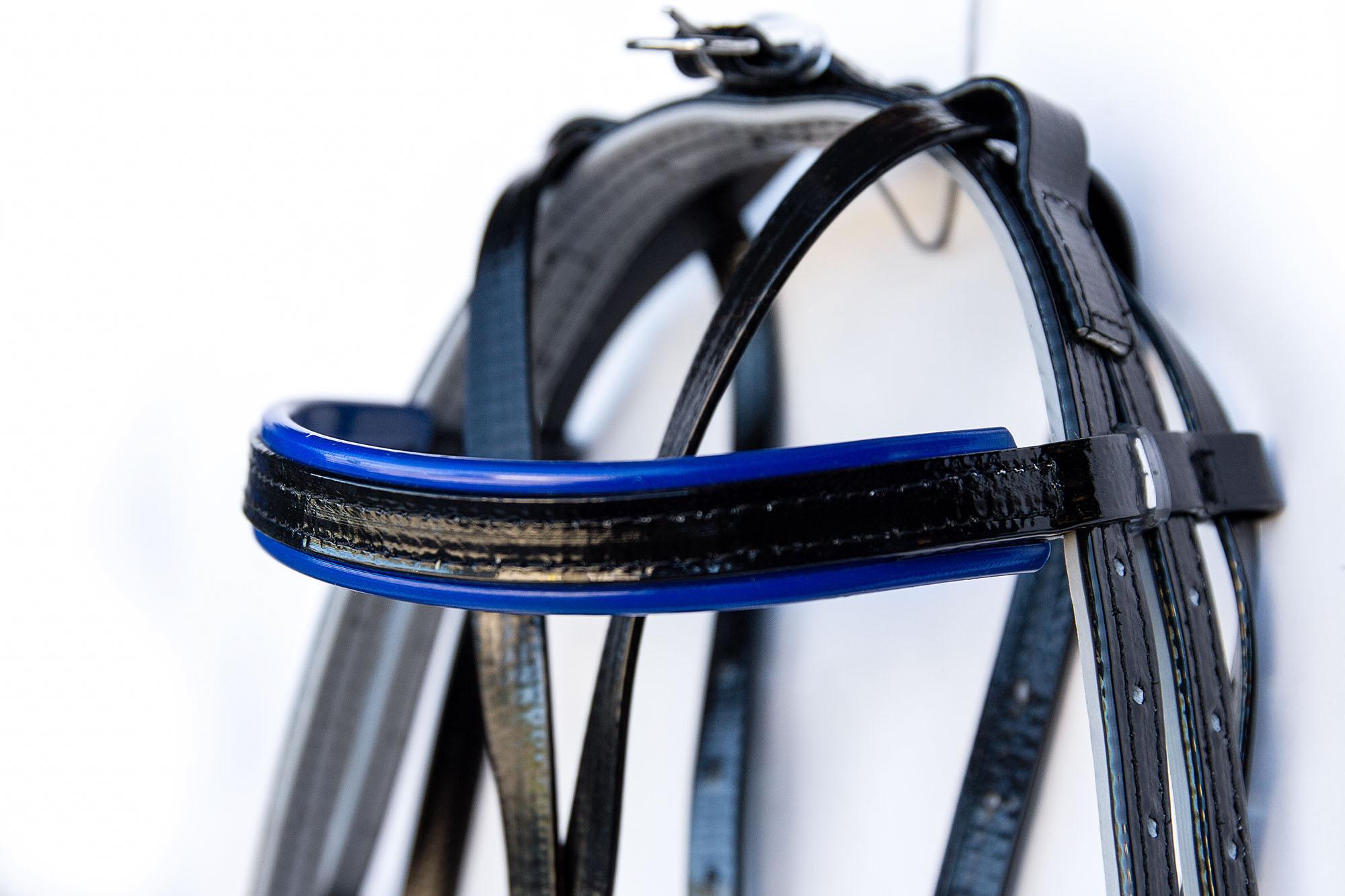 Harness-TD-Black-Blue  09.jpg