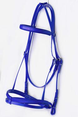 Bridle Set-Blue-8.jpg