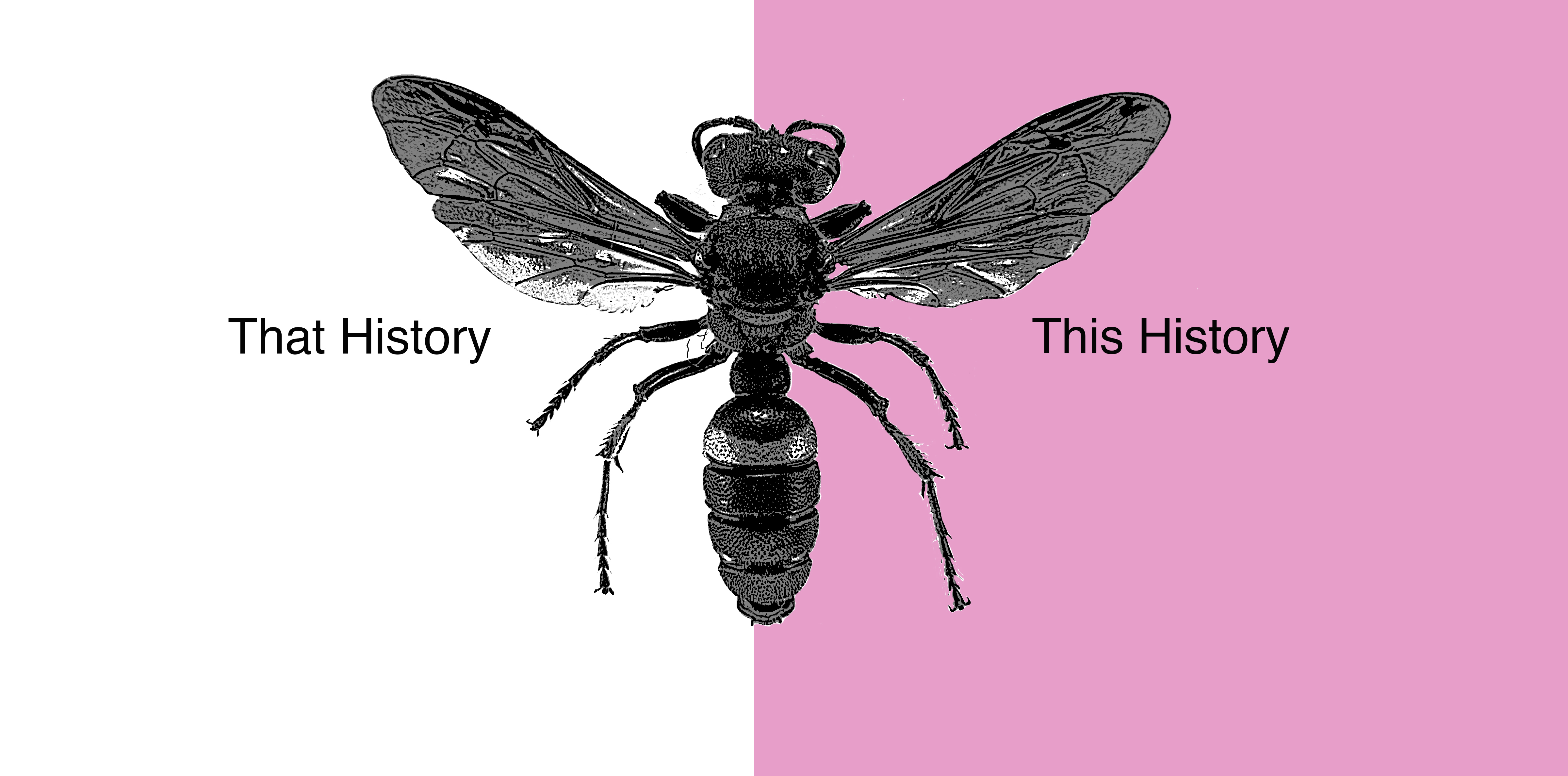 WASP HISTORY