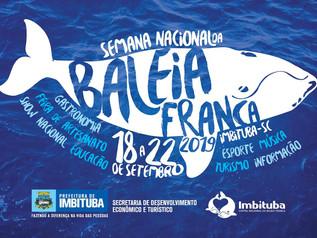 Semana Nacional da Baleia Franca acontece entre os dias 18 e 22 de setembro