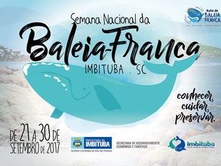Semana Nacional da Baleia Franca já tem programação
