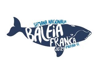 Semana Nacional da Baleia Franca: serão cinco dias de atrações no município