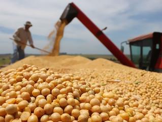 FACISC avalia destaques no agronegócio catarinense