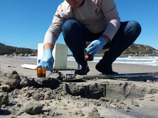 Areia da Praia da Vila será analisada